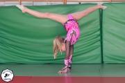 2014 Gimnastyka